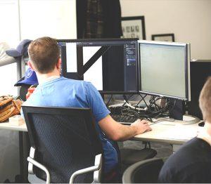 professional web developer